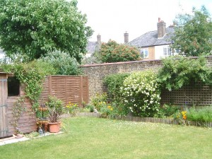 The garden in Earlsfield